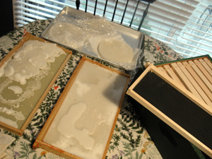fondant patties and frames