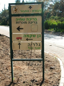 hebrew sign pointing to bee center