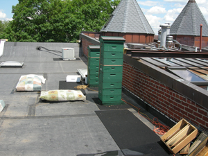size of roof hives june 2008