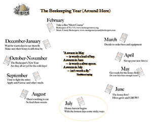 local beekeeping calendar