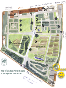map of Chelsea Physic Garden with Beehives highlighted