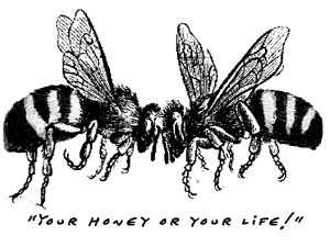 bee confrontation cartoon